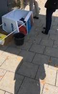 Afd_Stand_M.Süd-2
